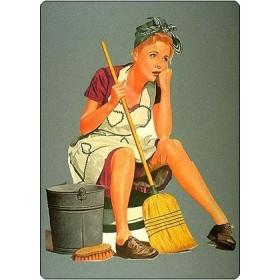 Чистящие и моющие средства - средства для уборки дома  (61)