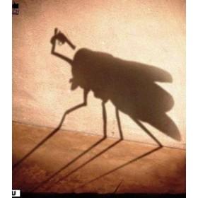 Средства защиты от насекомых (6)